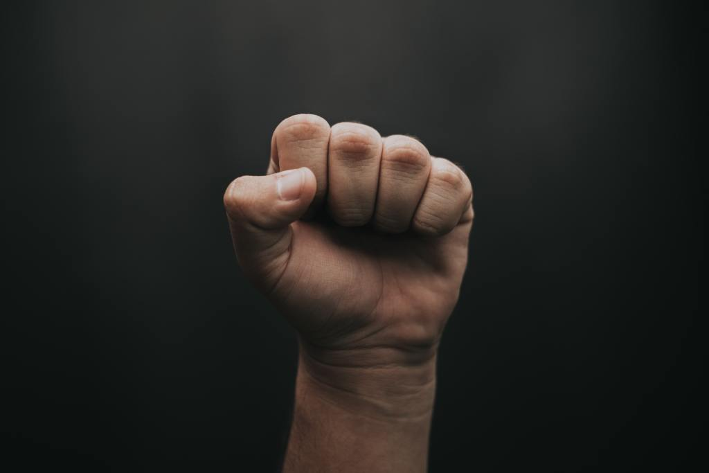 picture of a hand fist