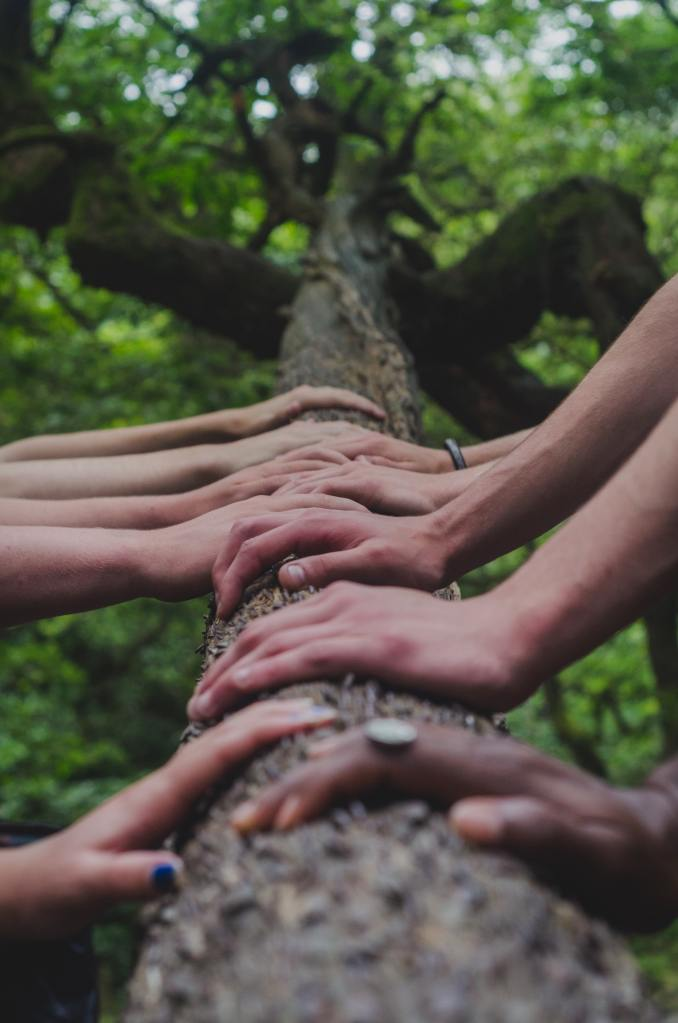 picture of many hands in a trunk